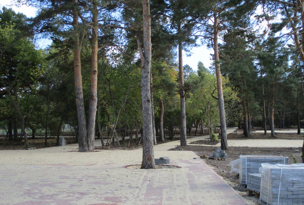 Ремонтные работы в парке