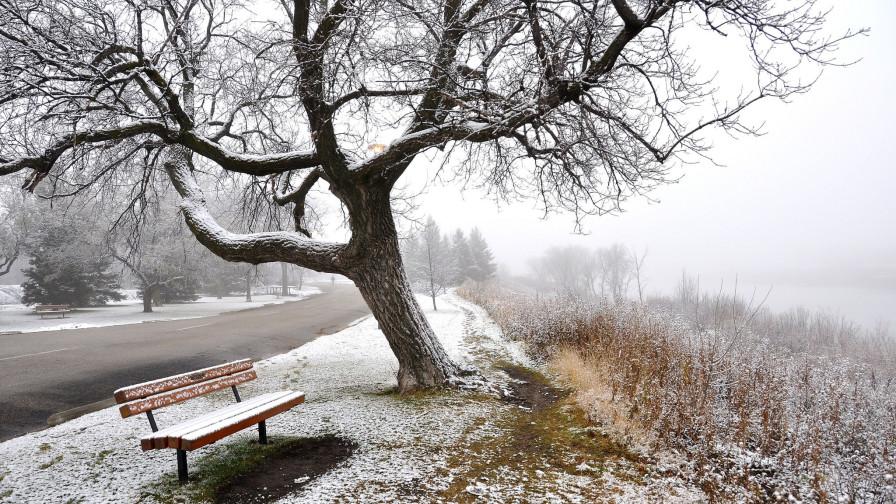 Поздняя осень - зима