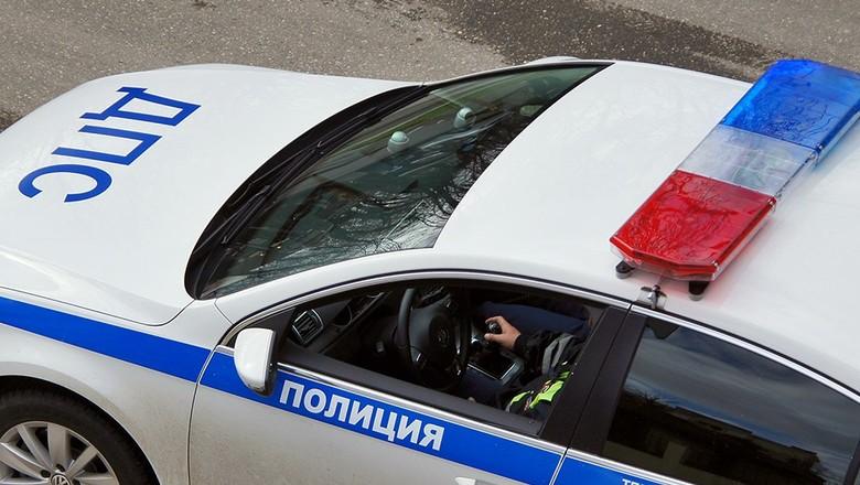 В Ачитском районе инспекторам ДПС причиняли боль