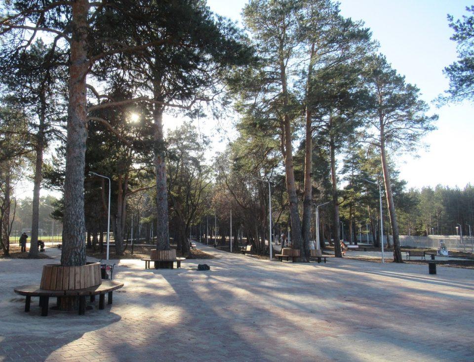 Городской парк. Фото Елены Шеремет