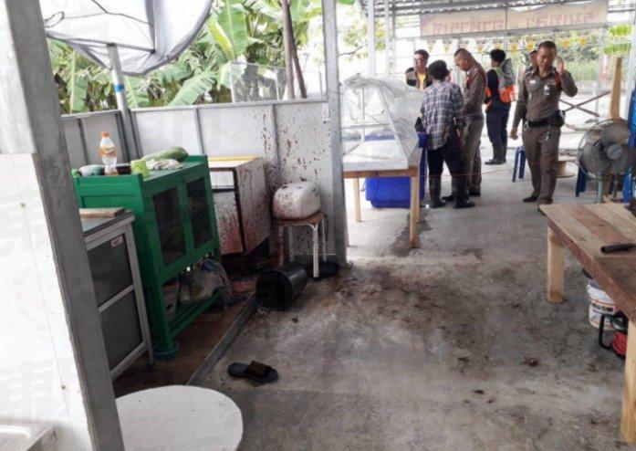 В одном из ресторанов Бангкока вегетарианцев кормили человечиной