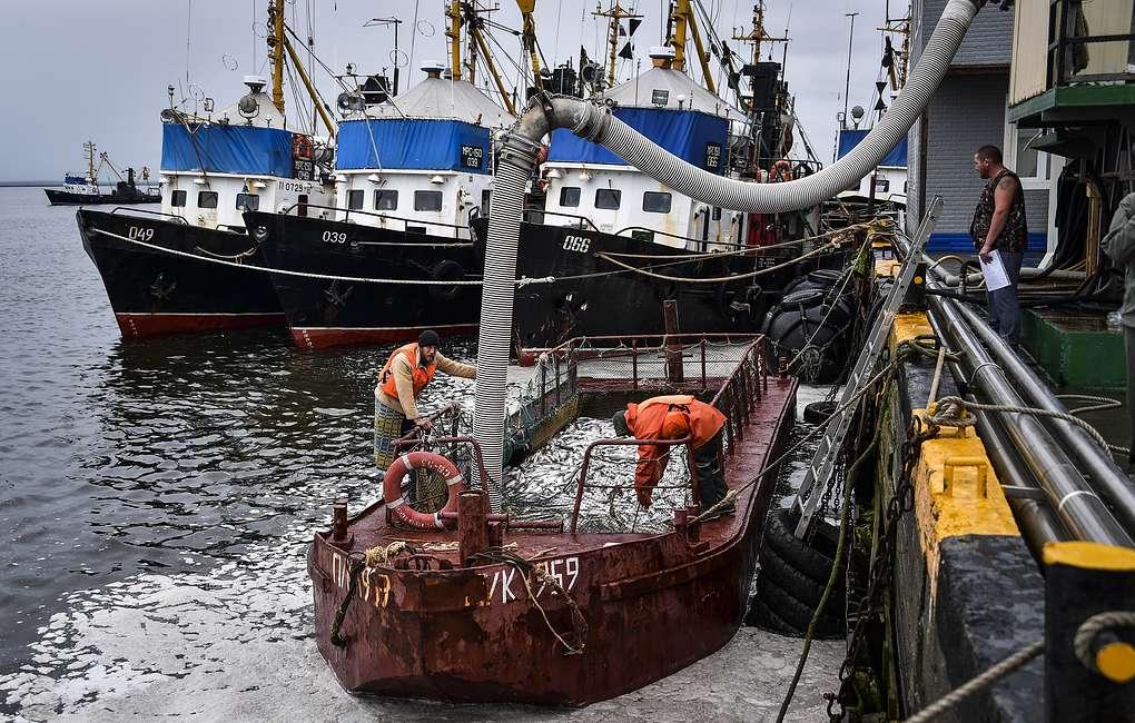 протокол о вылове рыбы в Азовском море