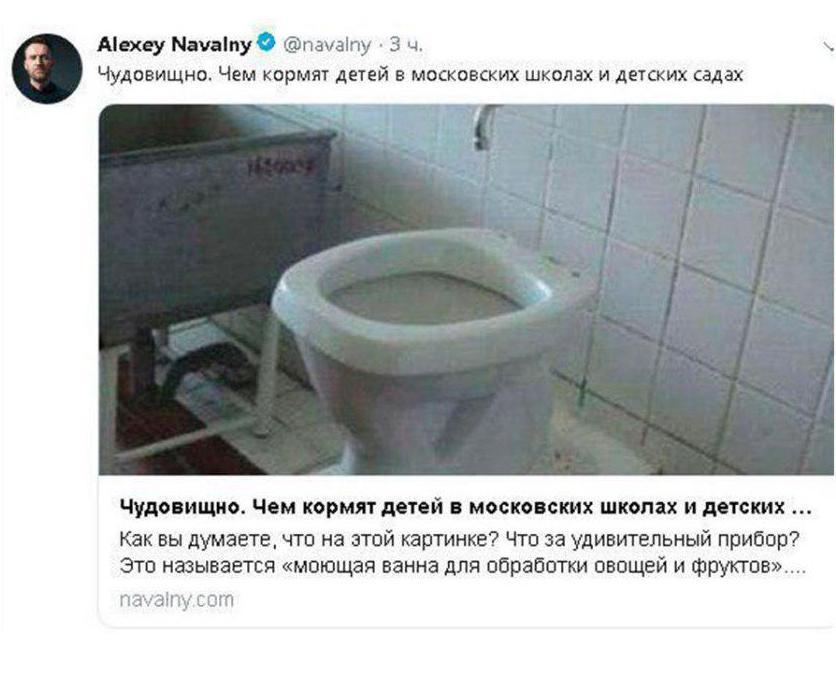 Навальный удалил фото унитаза