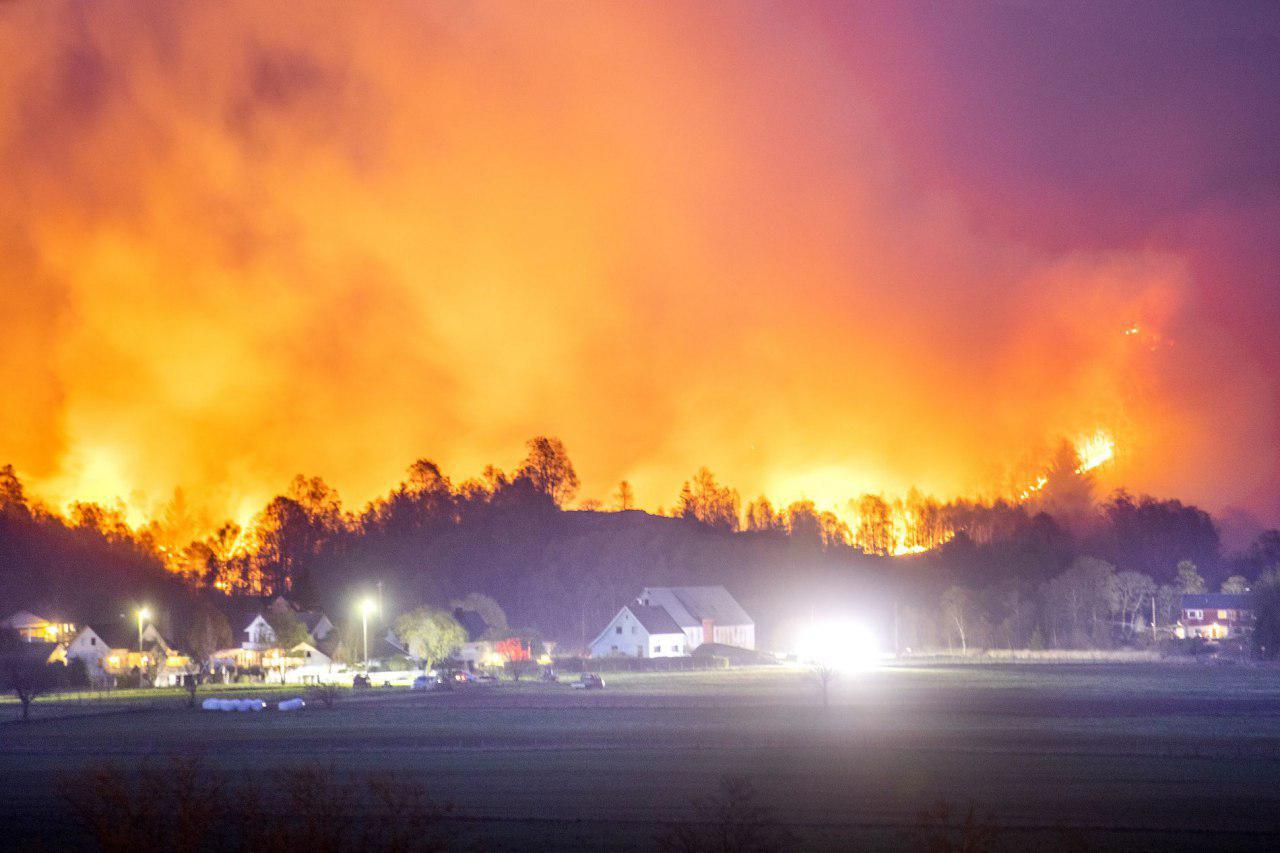 В Норвегии лесные пожары