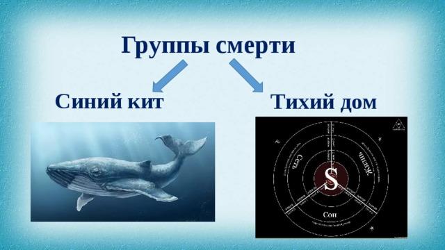 Группа смерти Синий кит