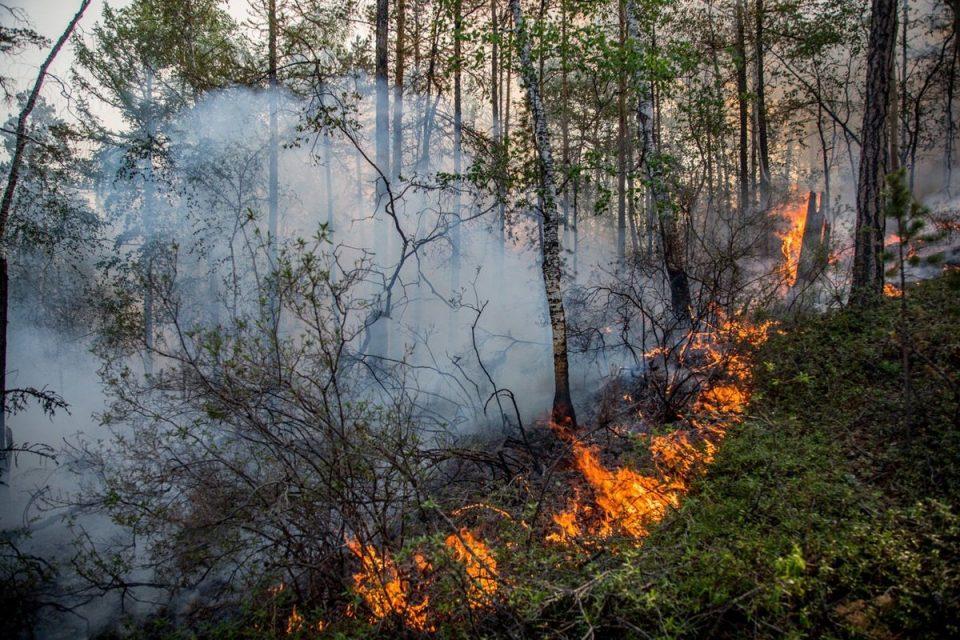 За неделю в Каменске произошло 68 пожаров