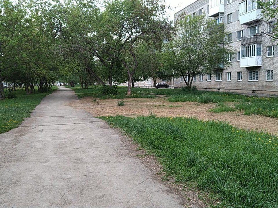 В сквере по Тевосяна выгорела трава