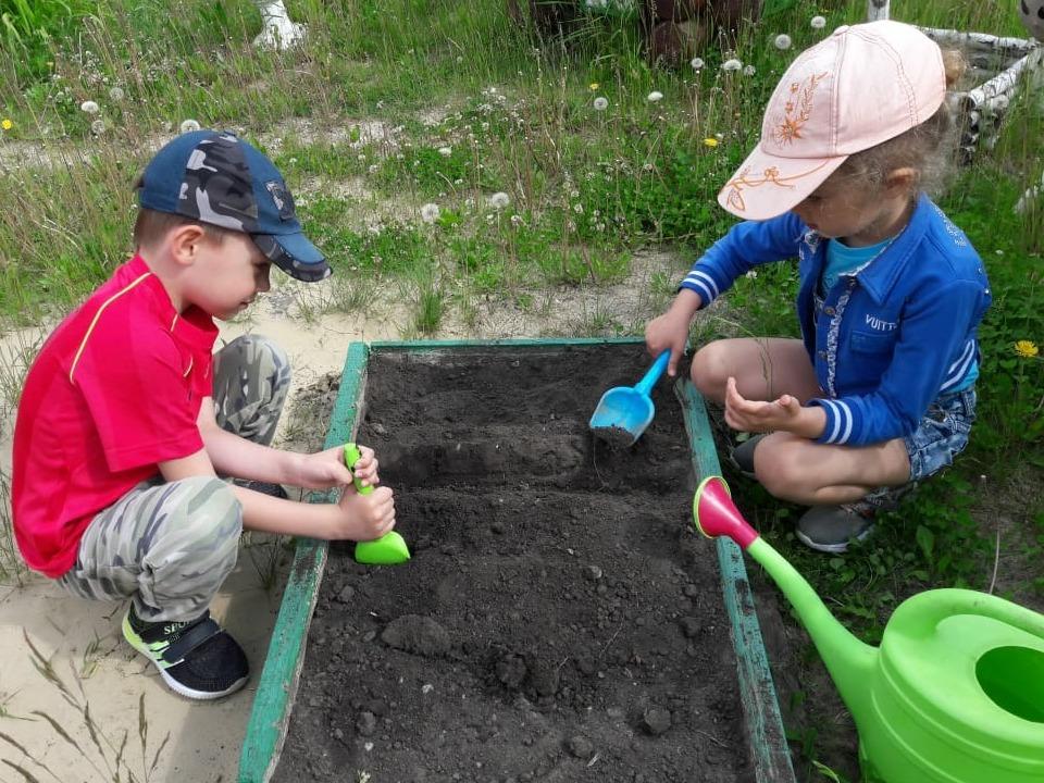 Посадить дерево приглашают всех жителей Каменска-Уральского