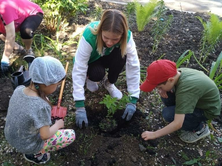 В акции по высадке деревьев поучаствовало 350 жителей Каменска-Уральского