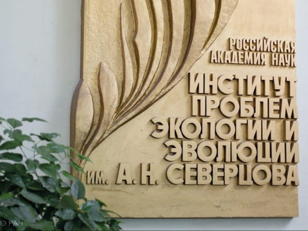 Академия наук заинтересовалась Каменским районом после публикаций о медведе