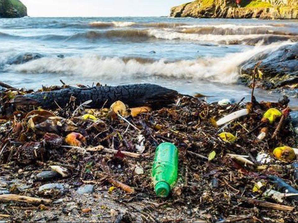 Франция - главный загрязнитель Средиземного моря пластиком по версии WWF