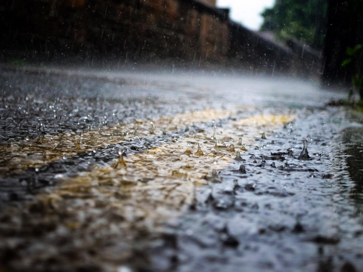 МЧС предупреждает о грозе, граде и ураганном ветре 25 июня