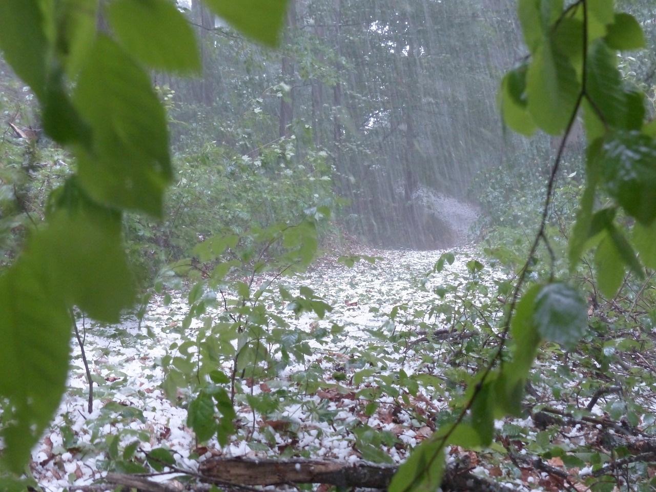 МЧС: На Свердловскую область надвигаются грозы, ливни, град и сильный ветер