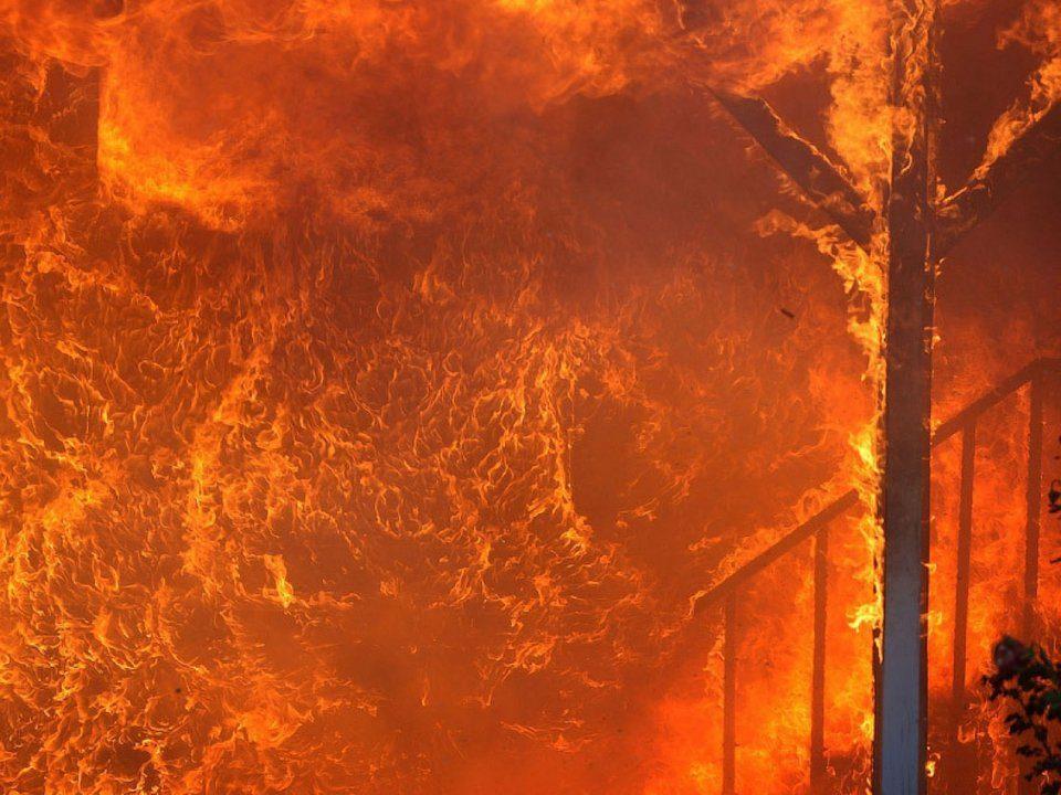Садового поджигателя задержали в Каменске-Уральском