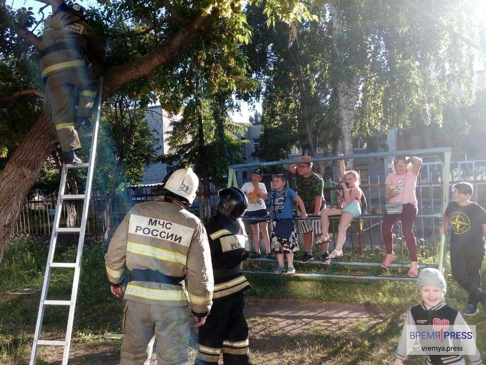 Каменские спасатели сняли с дерева двоих детей и мячик