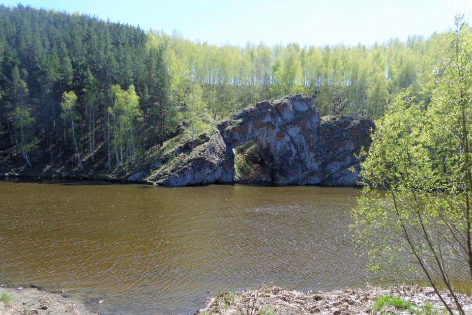 В Каменске-Уральском видели медведя?