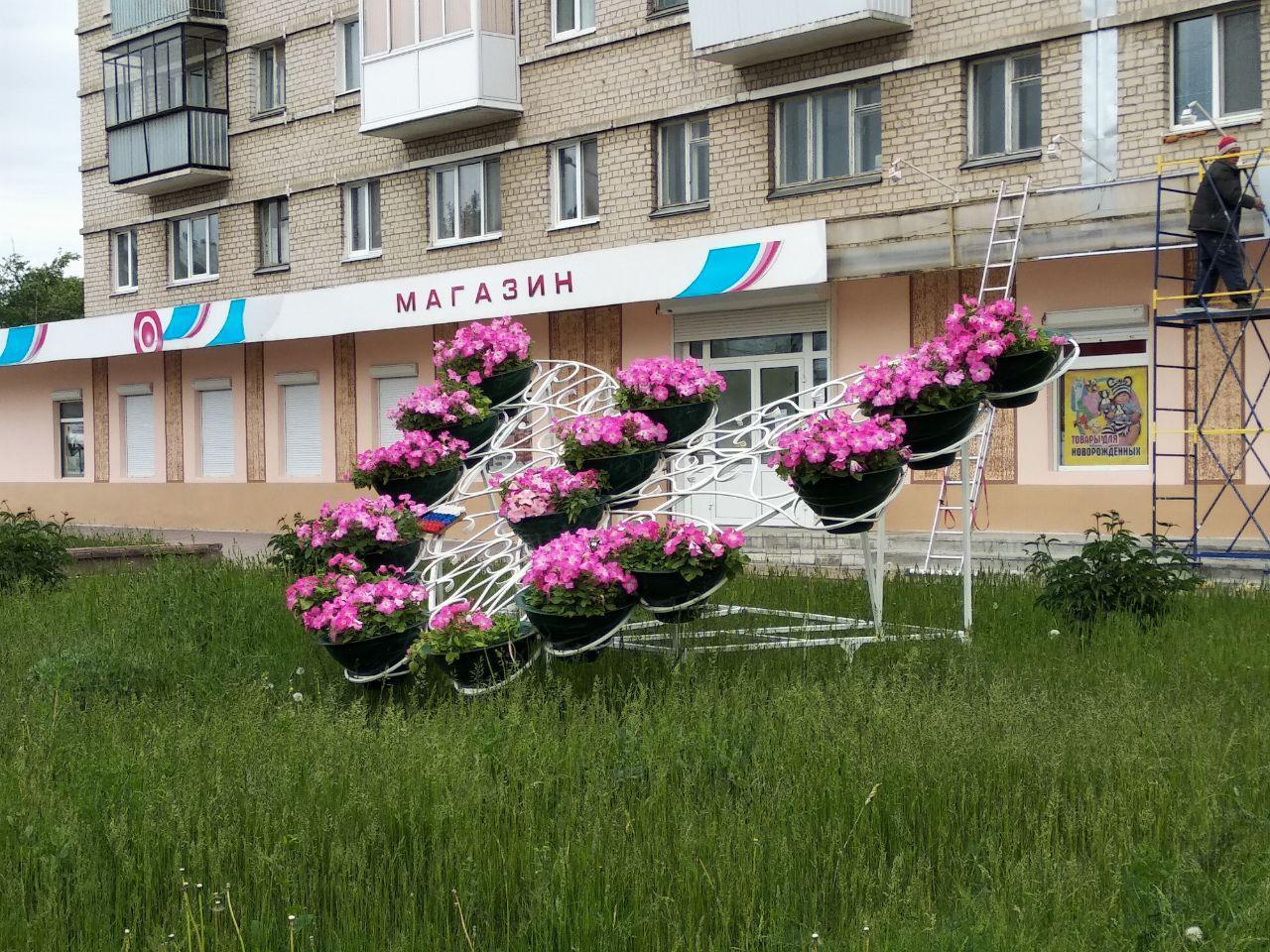 Летом на улицах Каменска высадят 40 тысяч цветов