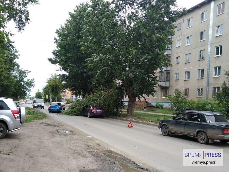 Дерево упало на автомобиль в Каменске-Уральском (фото)