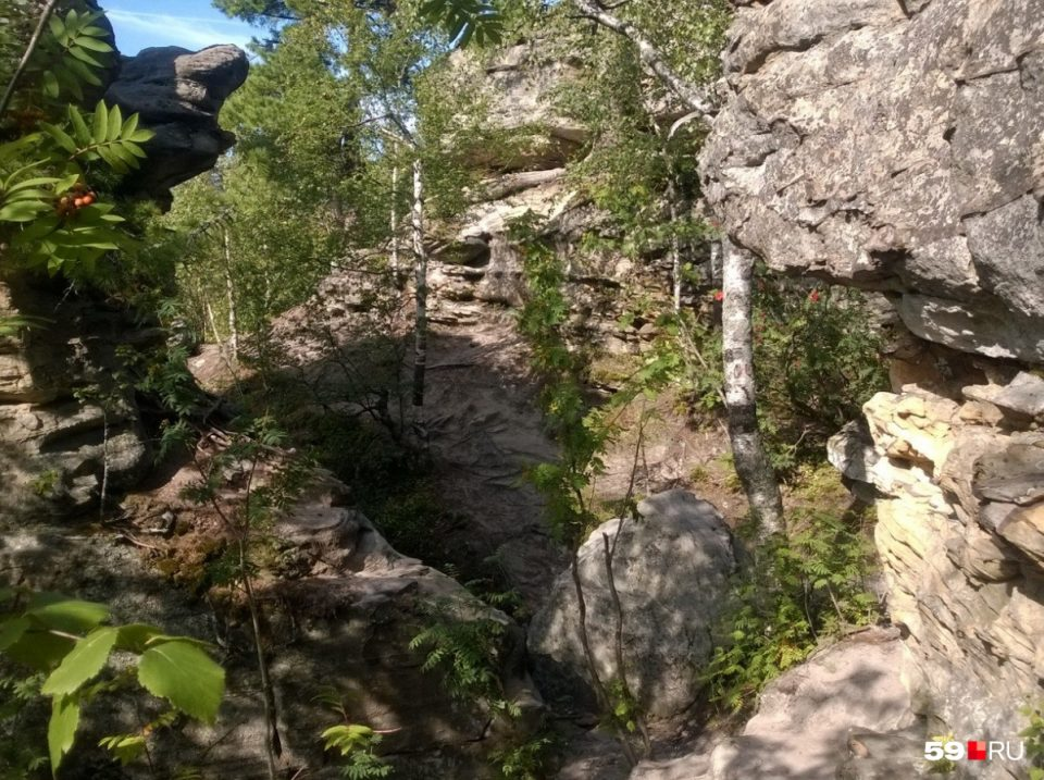 Во время съемок фильма Сердце Пармы были незаконно вырублены деревья в Прикамье, возбуждено уголовное дело