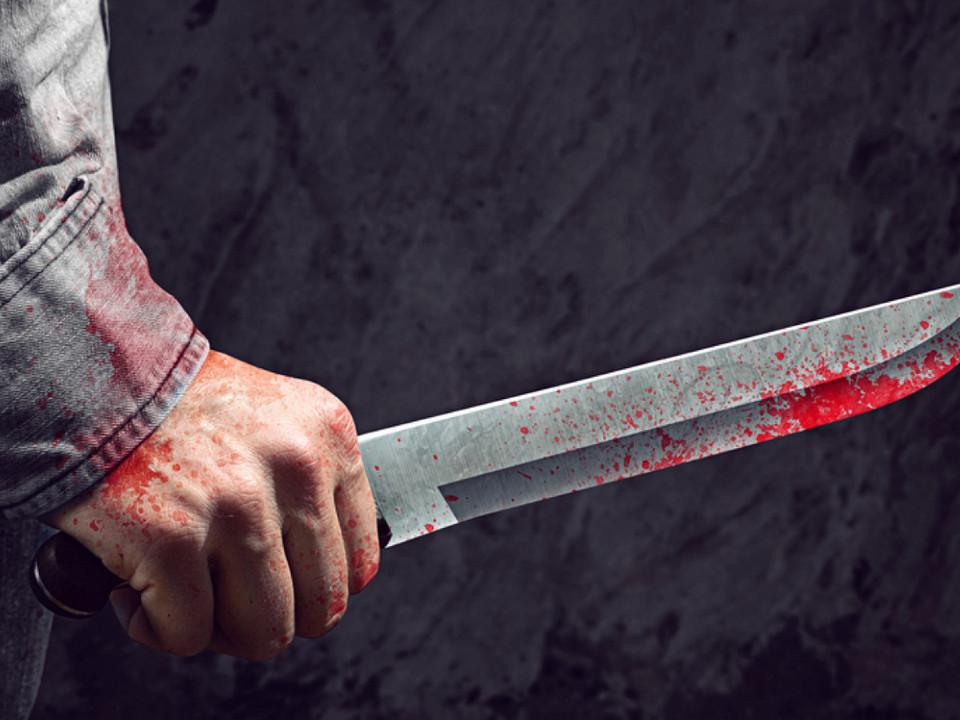 Жителя Свердловской области приговорили к 9,5 годам за убийство брата-близнеца