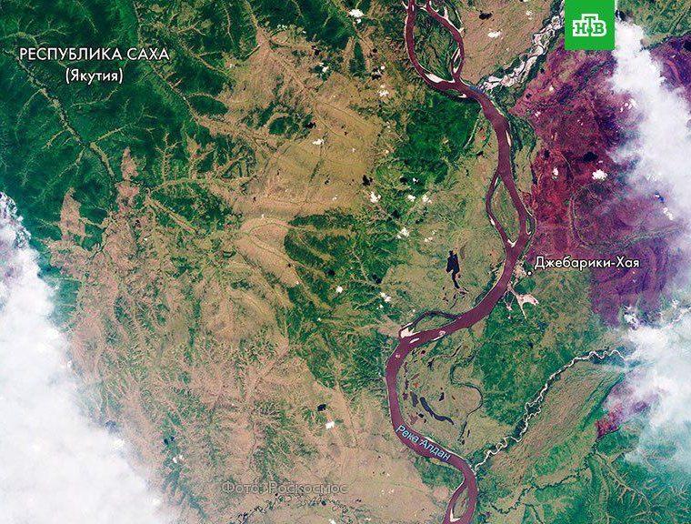 Из-за лесных пожаров в Красноярском крае возбуждено уголовное дело о халатности