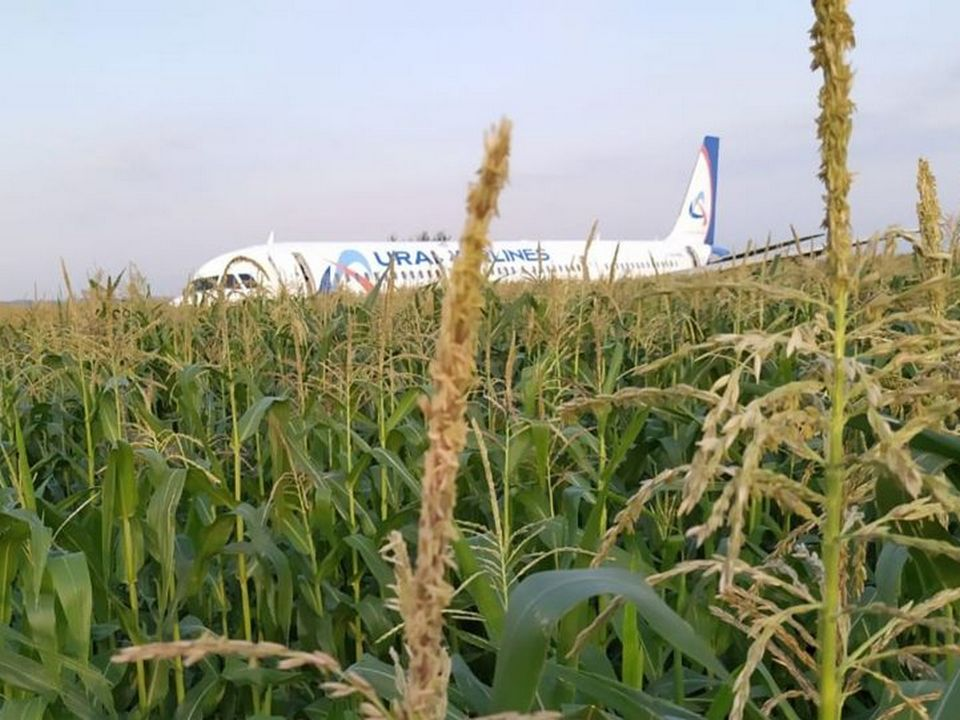 Куйвашев опубликовал фото членов экипажа А321, посадившего самолёт в Подмосковье