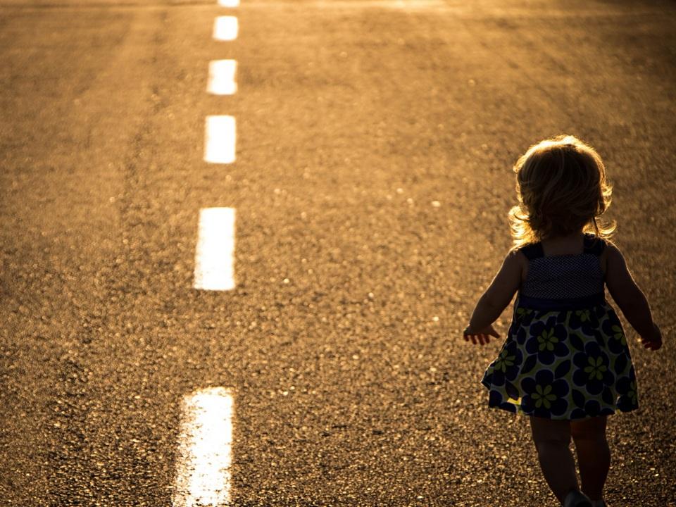 Пропавшую двухлетнюю девочку нашли живой в Вологодской области