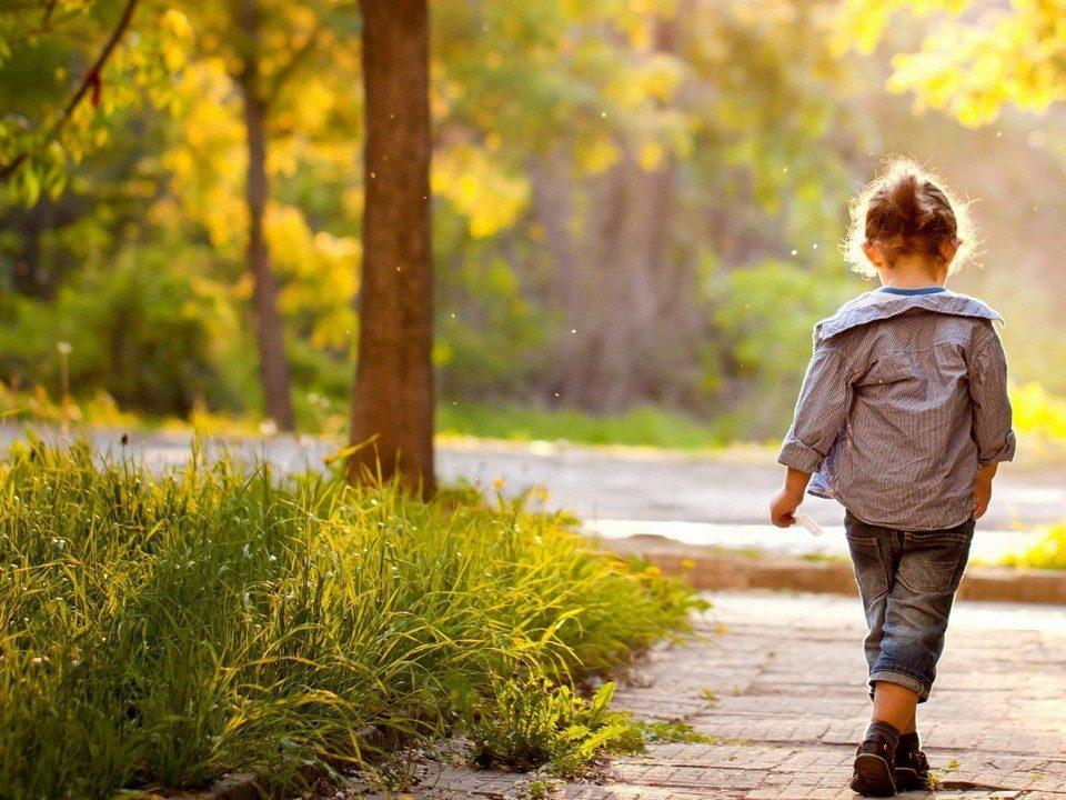 В Вологодской области области пропала двухлетняя девочка, СК РФ завел дело