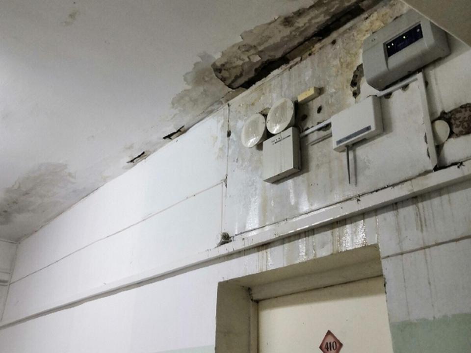 Минздрав региона рассказал, когда отремонтируют поликлинику по Добролюбова