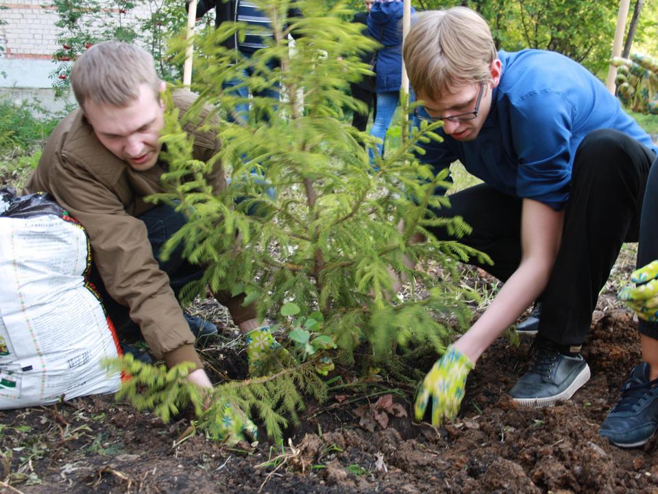 Волонтёры озеленят территорию детского сада в Каменске