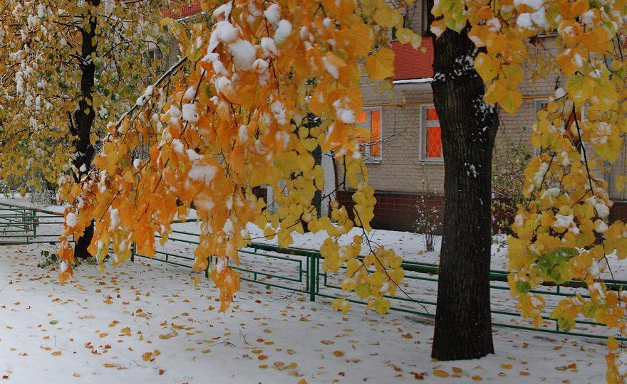 На Урале синоптики обещают снег и гололедицу уже завтра