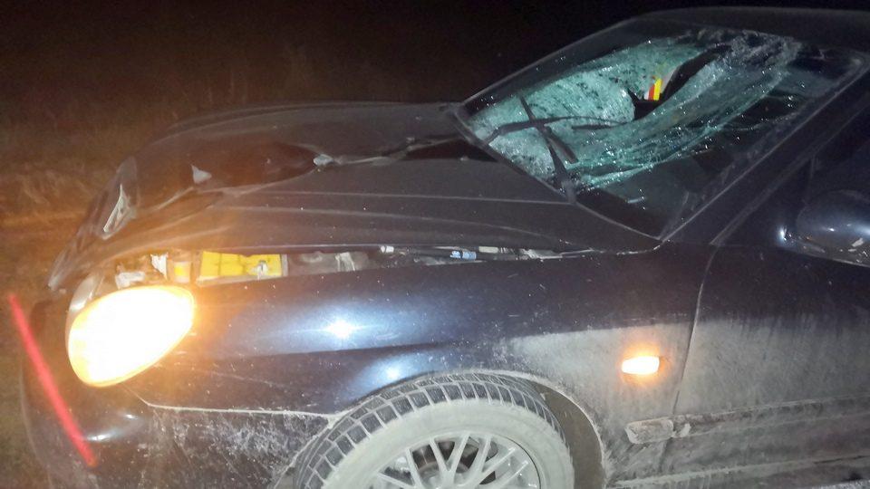 Смертельное ДТП в Каменском районе: погиб мужчина-пешеход