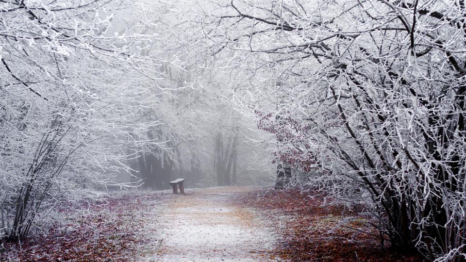 Сильный снег надвигается на Свердловскую область
