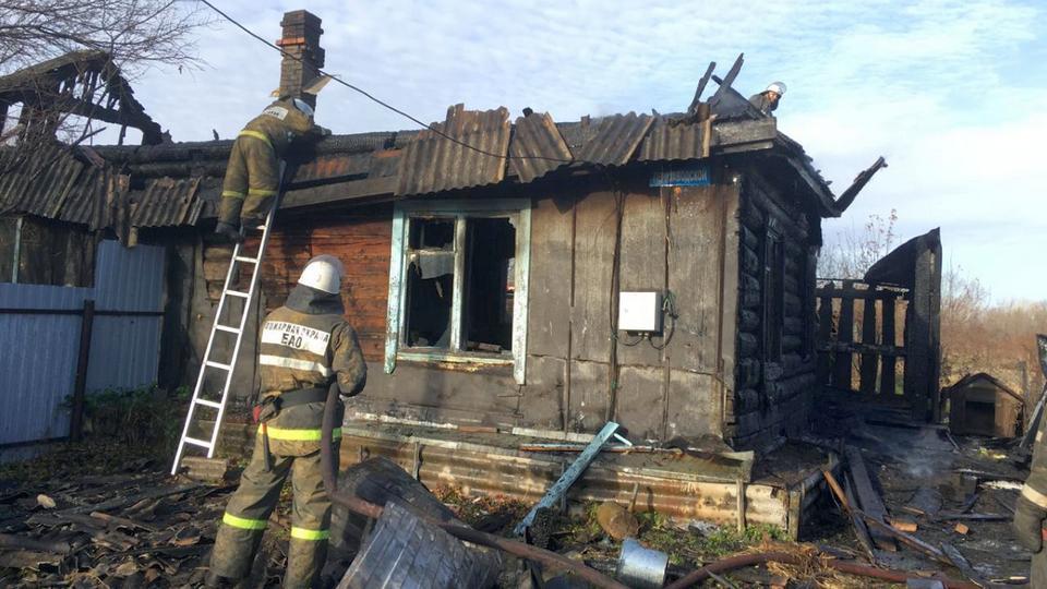 В Еврейской АО кошка спасла хозяев из горящего дома