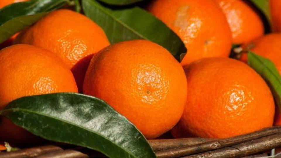 Зараженных гриппом мандаринов не существует