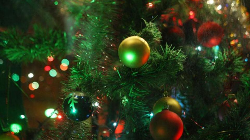 В городском парке Космос в Каменске-Уральском появится новогодняя елка и горки