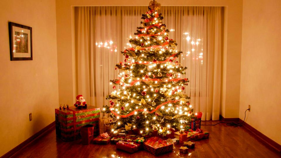 Житель Йошкар-Олы украл у экс-сожительницы люстру и наряженную новогоднюю ёлку