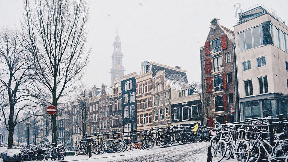 Власти Нидерландов пояснили, почему официально не хотят быть Голландией