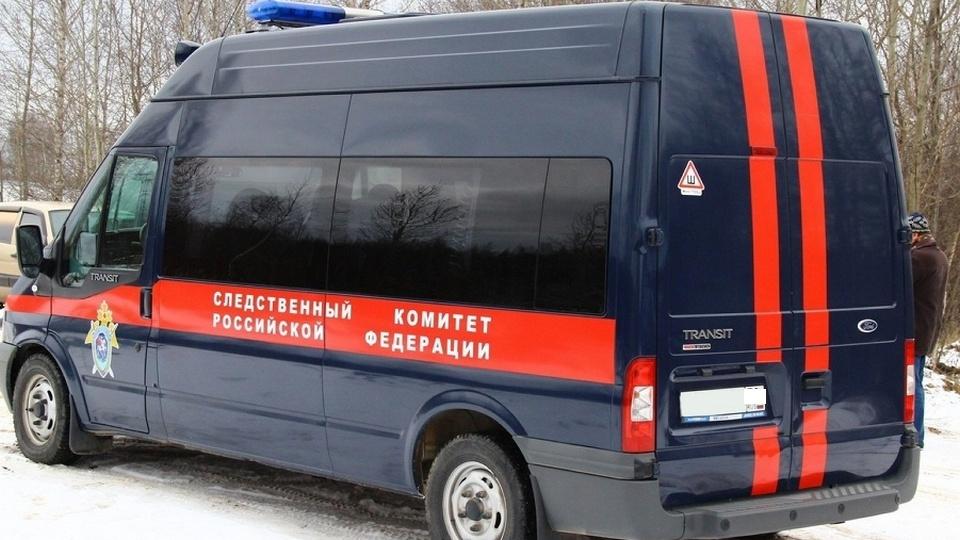 Петербургский школьник расстрелял родителей из травматического пистолета