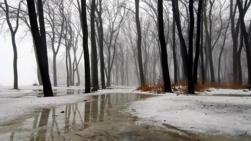 Дождь в Свердловской области пойдет к концу недели