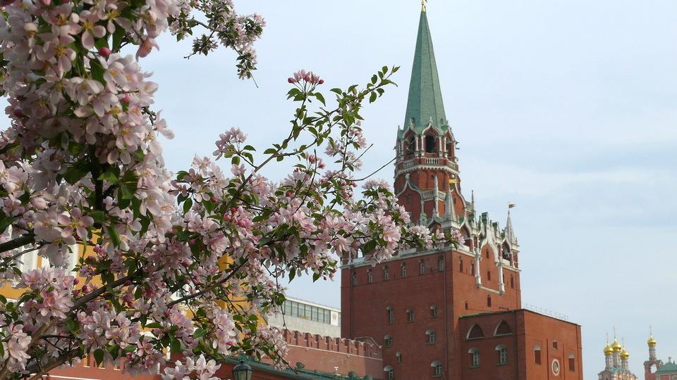 На европейскую территорию России надвигается необычный антициклон с теплом