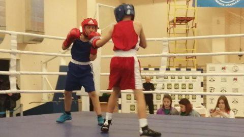 Чемпионат и Первенство Свердловской области по боксу пройдет в Каменске-Уральском