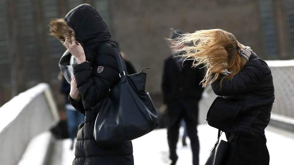 МЧС по Свердловской области предупредила о сильном ветре
