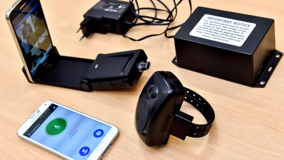 В Мурманской области предложили использовать электронные браслеты для зараженных коронавирусом
