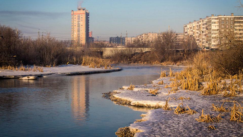 Жители Челябинска затравили соседа, прилетевшего из Турции