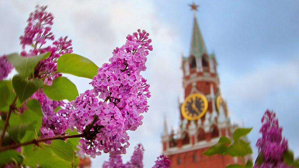 Синоптики выпустили прогноз погоды для России на май