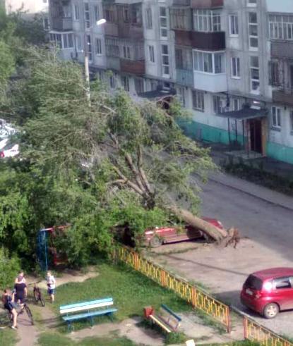 Ураган в Свердловской области: упавшие деревья, остановки и слетевшая кровля