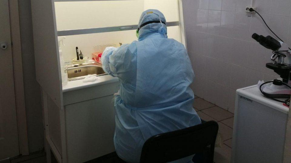 Роспотребнадзор прекратил массовое тестирование горожан на коронавирус из-за отсутствия финансирования