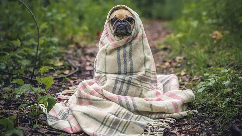 На Урал идет серьезное похолодание