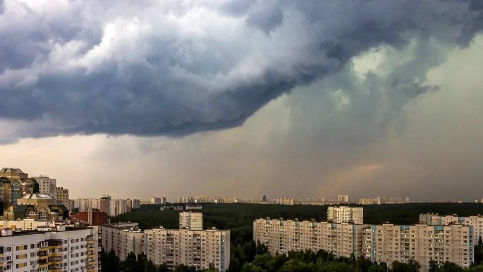 Гроза в Москве повалила не менее 60 деревьев
